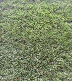 Kunstgras Mook Gras Art Fine extra_