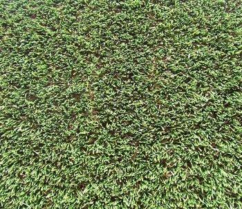 Kunstgras Mook Gras Art Fine Victoria W-up